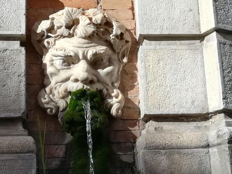 La fontana - mascherone  della fontana