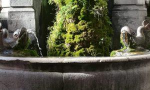 La fontana - la fontana dei Pesci