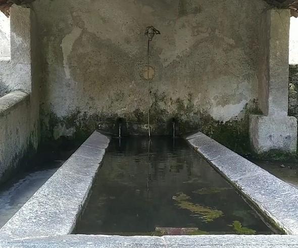 Narciso Si Specchia Nella Fonte