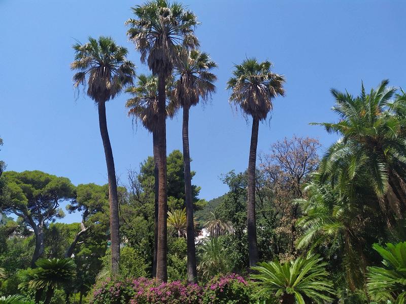 Villa Comunale Salerno