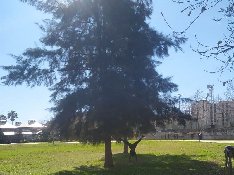 Attivita Allaperto Nel Parco Mercatello