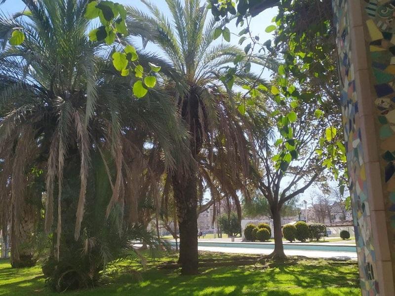 Scorci Di Natura Del Parco Del Mercatello