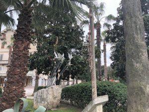 Monumento Ai Caduti Per La Liberta