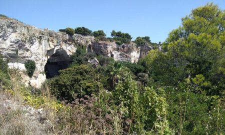 Vegetazione Parco Archeologico Della Neapolis