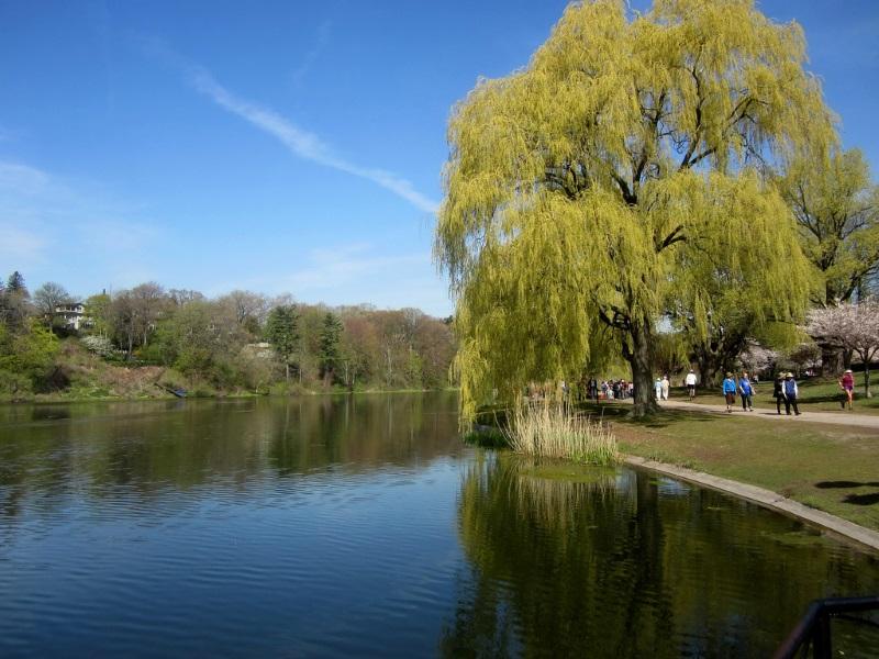 High Park, Grenadier Pond
