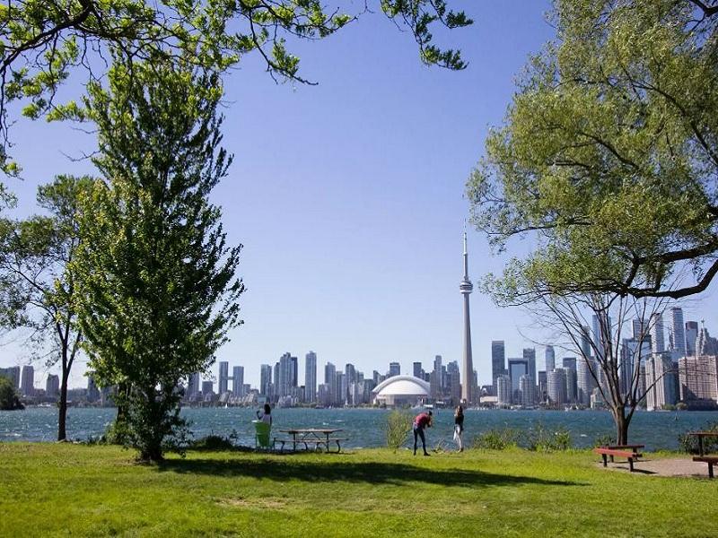 Toronto Islands, una zona verde con alle spalle la veduta della città