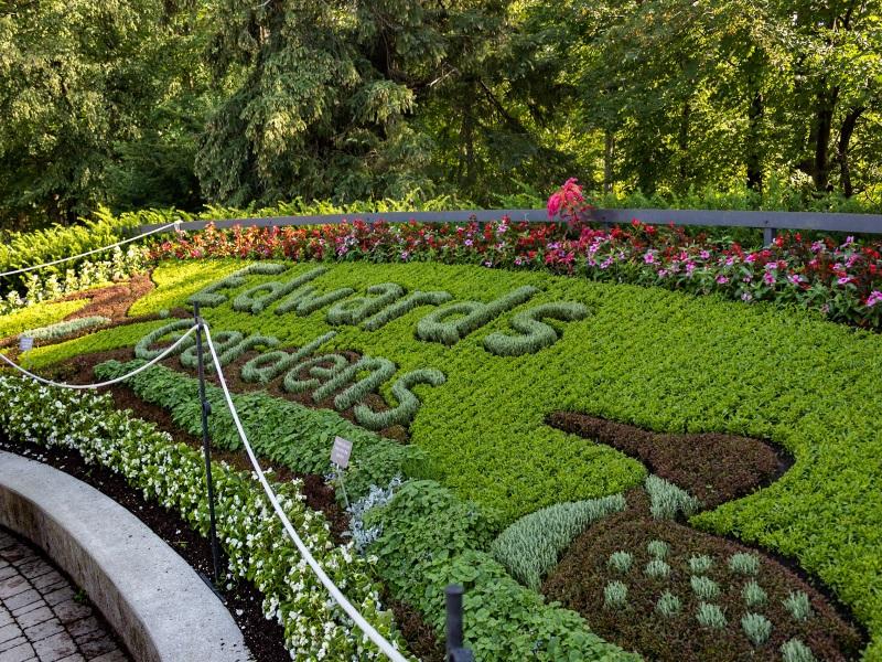 Toronto Botanical garden: Giardino Botanico nell'Ontario