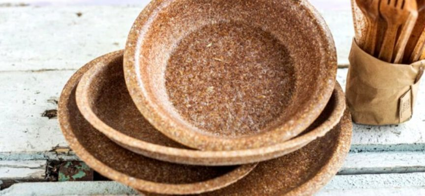 I piatti in crusca di grano realizzati da Biotrem