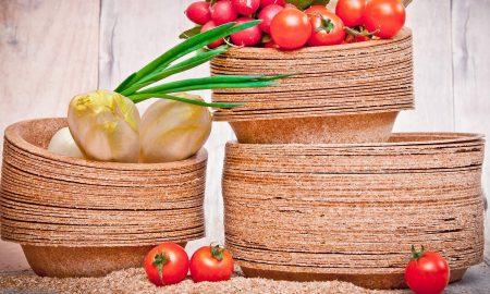 Cropped Stoviglie Biodegradabili.jpg