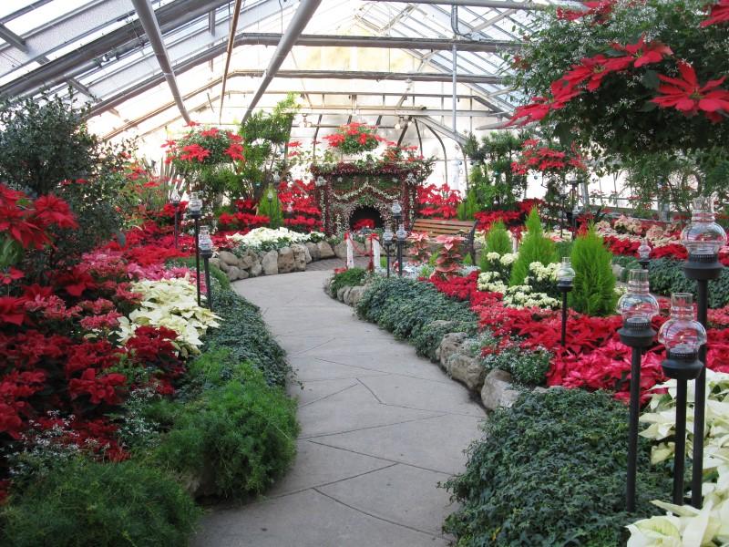 Christmas Show at Centennial Park Conservatory