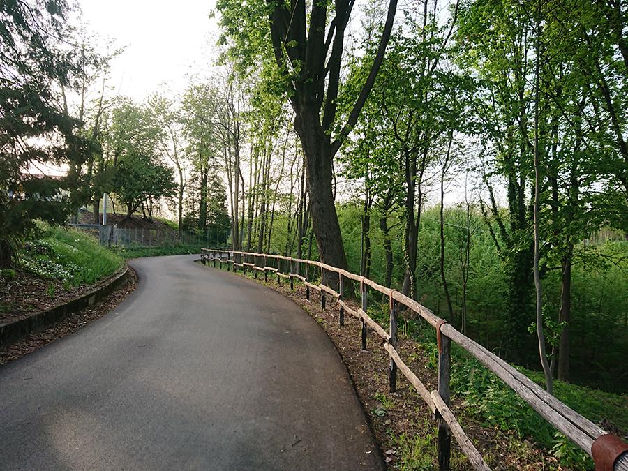 Montello2