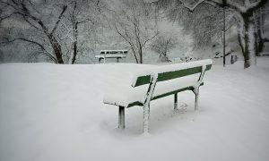Neve A Treviso