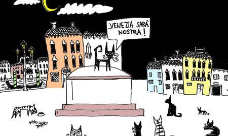 maramiao gatto zebrato venezia