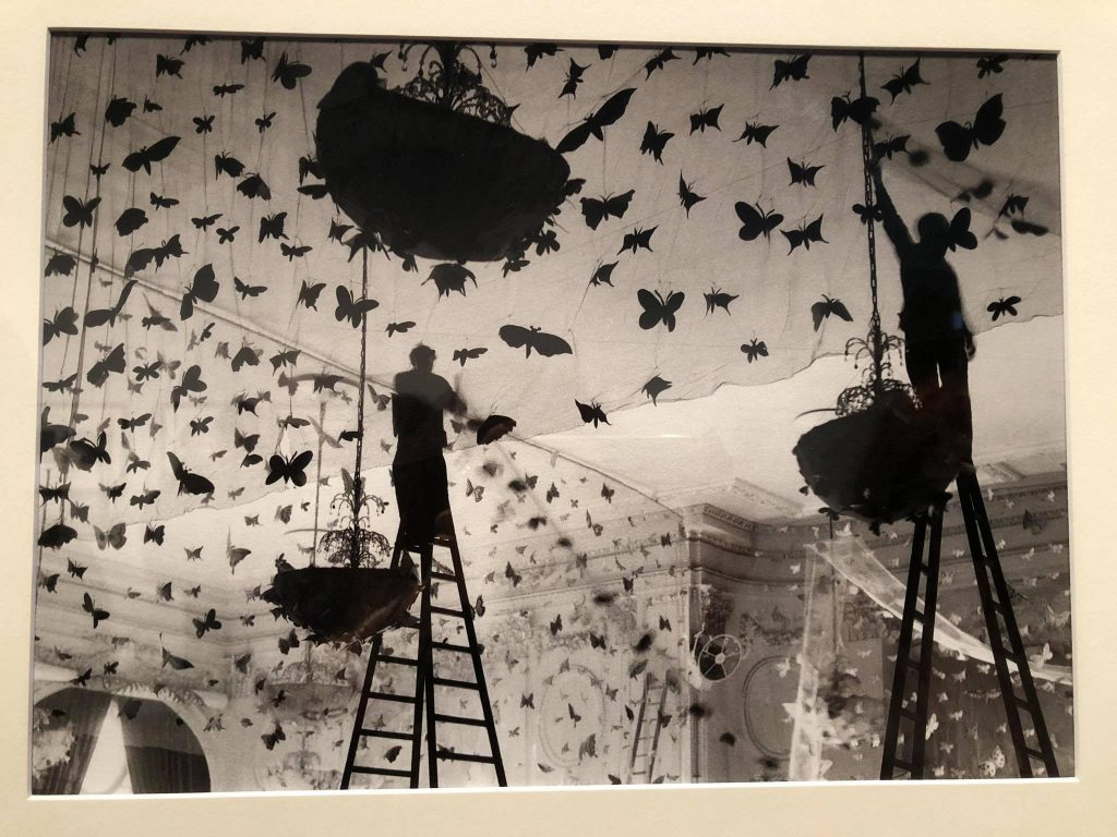 J.H. Lartigue, farfalle