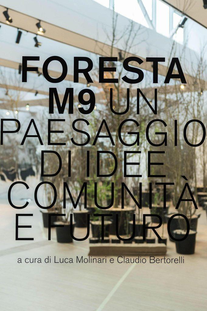 Una foresta simbolo di rinascita  Foresta M9 Paesaggio Di Idee