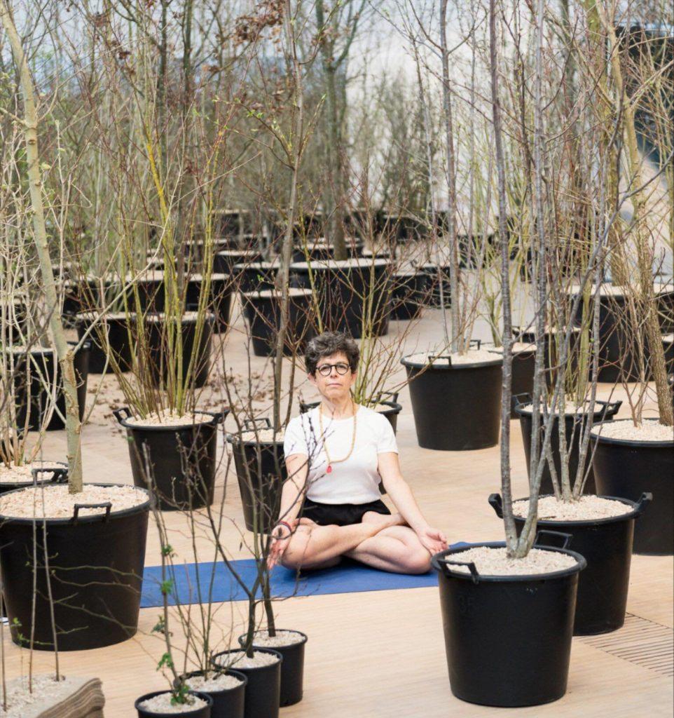 Una foresta simbolo di rinascita  Foresta M9 Yoga