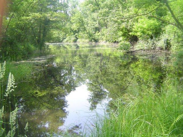 Parco Lame - immagine dell'area verde