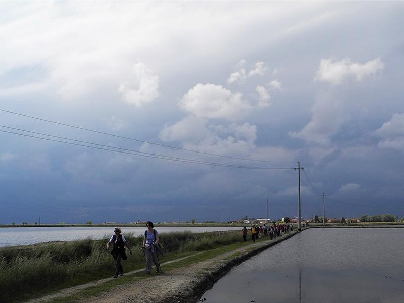 La via Francigena e il mare a quadretti di Vercelli.