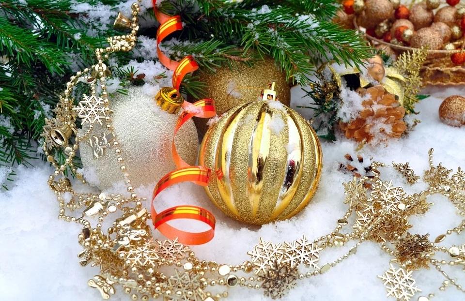 rsa gli aironi in gita al museo durante le vacanze natalizie