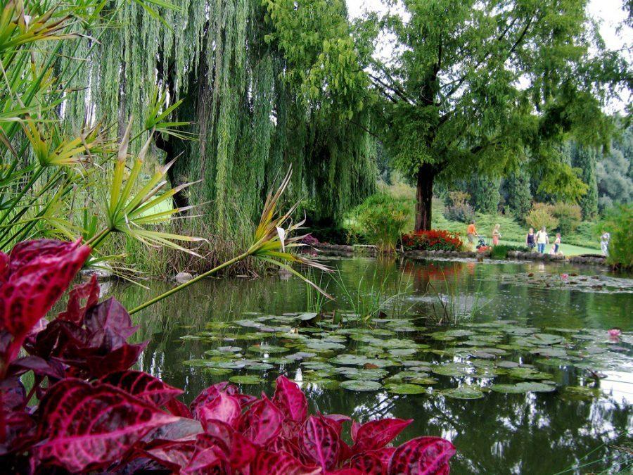 parchi e giardini: Il Parco Sigurtà a Valeggio sul Mincio