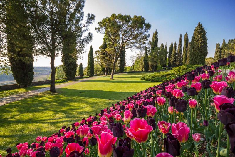 Parco Giardino Sigurta 4