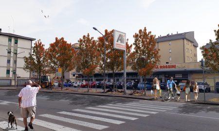 Alberi Via Rossini