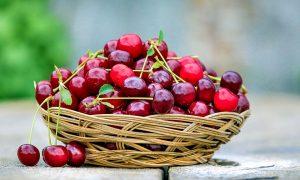 Le ciliegie di Marostica - Cestino di ciliegie fresche