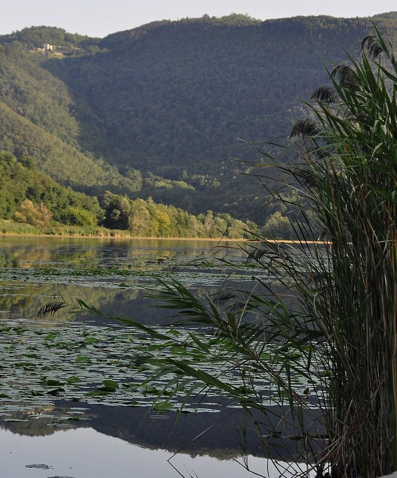Il lago di Fimon - Laghetto visto dalla riva