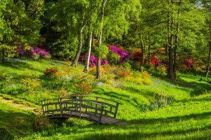 Il parco della Pace - Parco Con Passerella ideale